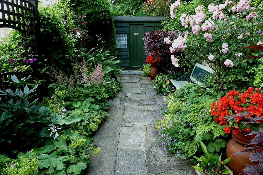Woodland and secret garden August 5th  (5)