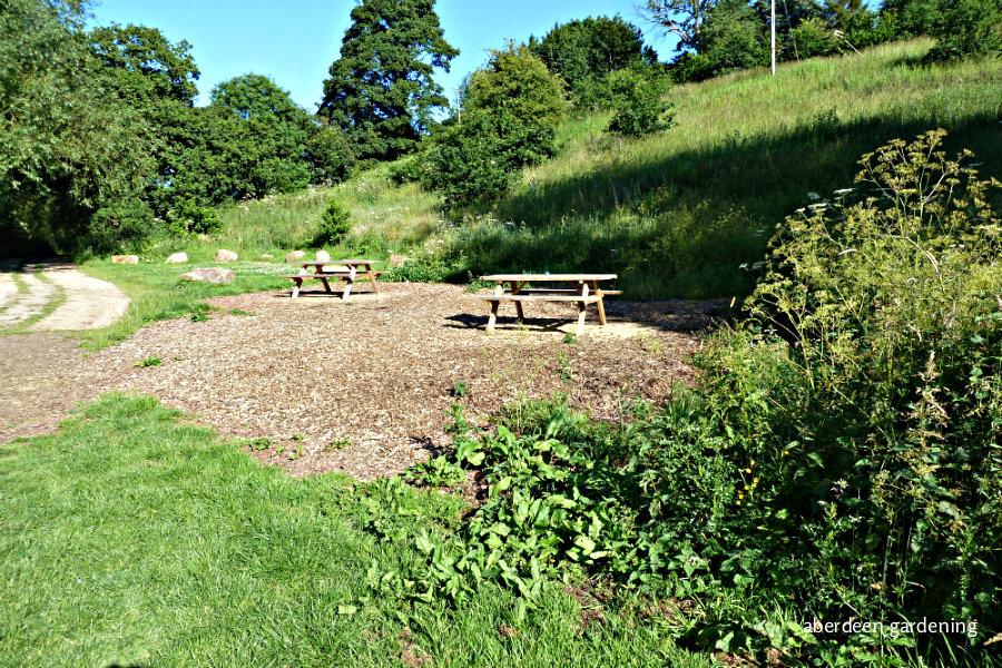 The Dane Meadow (6)