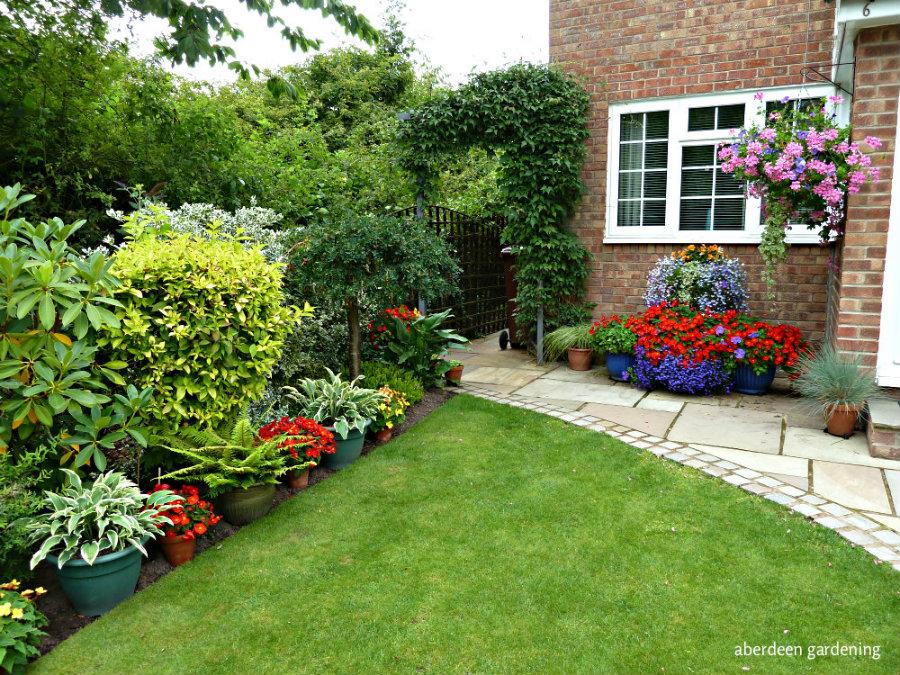 Front garden (12)