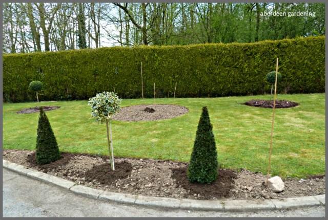 Hillarys garden (2)