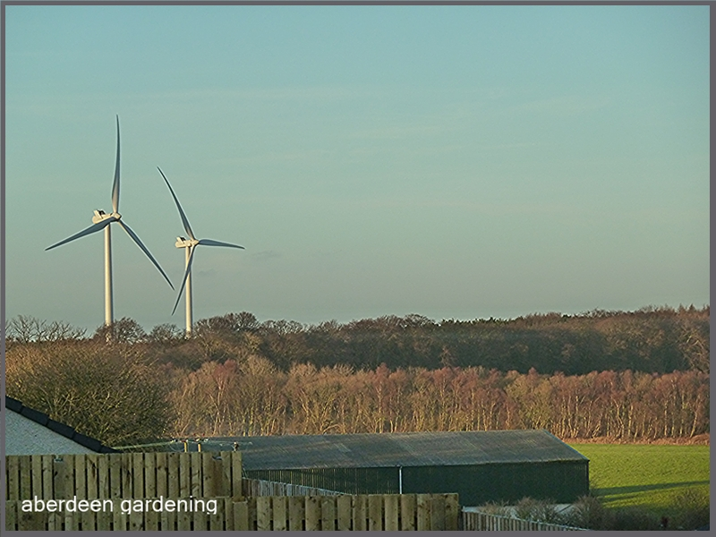 Wind turbines in Wemyss