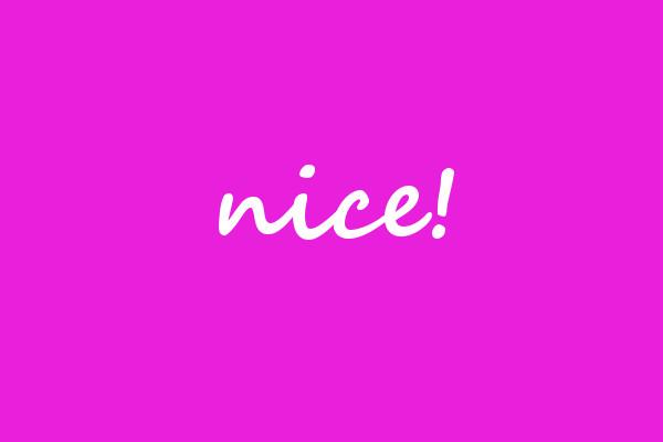 nice_leer