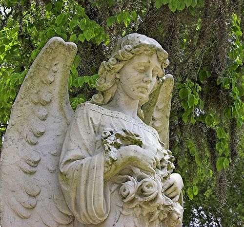 weeping angel photo