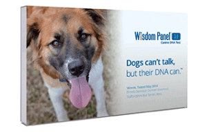 Mars-Veterinary-Wisdom-Panel-3.0