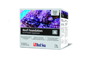 Red-Sea-Reef-Foundation
