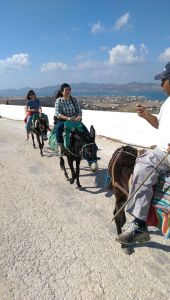 donkey rides on Paros island in Greece