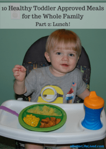healthy toddler approved lunches for the whole family!