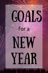 An accountability partner to help me crush my goals this year!