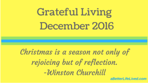 Grateful Living December 2016 Take a moment to be grateful and appreciate the little things in life. Realize that those little things are the big things.