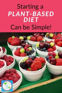 "Bowls of fruit with text overlay ""starting a plant based diet can be simple!"""