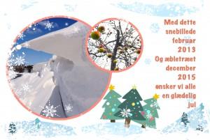 Glædelig jul til alle
