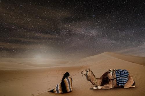 Developing a snag in desert