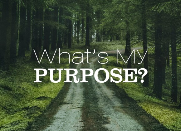 What's My Purpose?