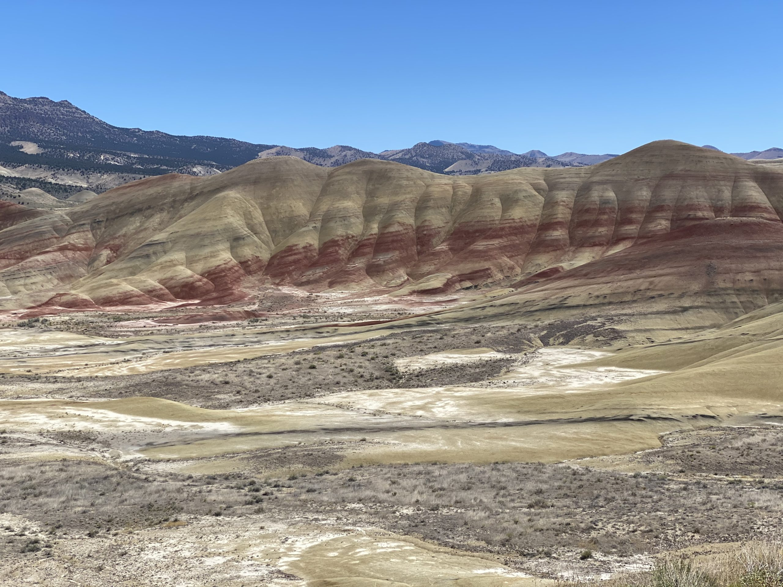 Read more about the article Climate Change In Color at the John Day Fossil Beds