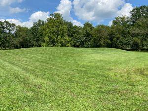 Cahokia: The Bodies at Mound 72
