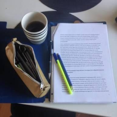 Rette yngstes specialiseringsopave for komma, stavefejl, og kan jeg forstå det jeg læser ;-)