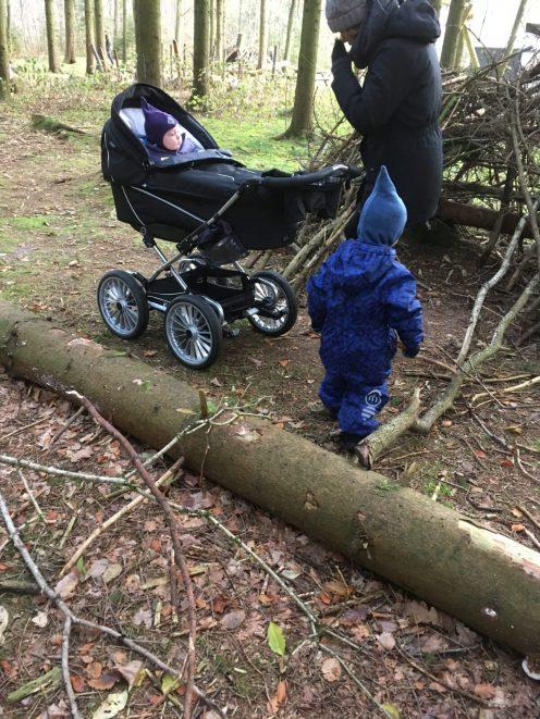 Skovtur i Vestre Plantage lørdag