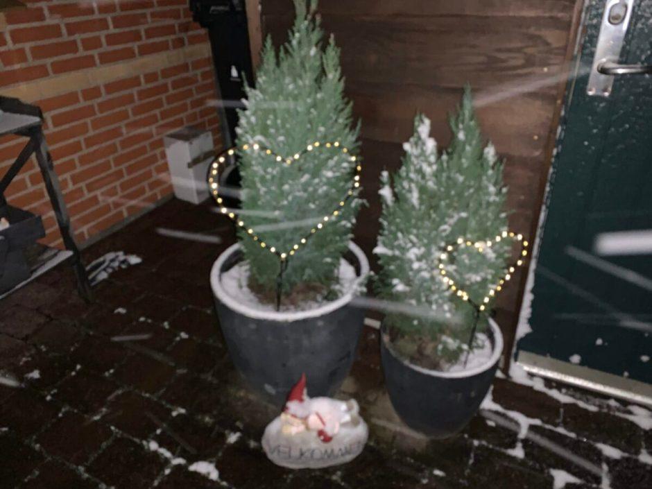 Sne og min jul 2020