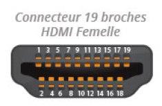 Connecteur HDMI Femelle
