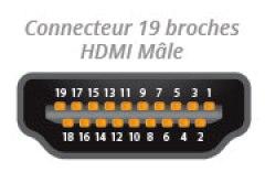 Connecteur HDMI Mâle