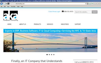 aka-consulting-screenshot