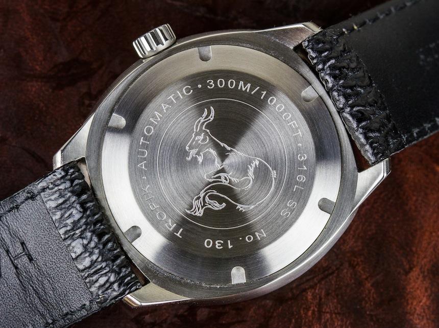 Halios Tropik Watch Review Wrist Time Reviews