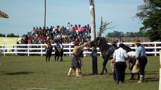 Ein Pferd wird angebunden