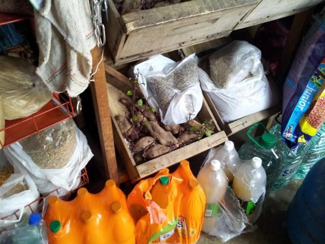Die Süßkartoffeln kann man schon wieder als Stecklinge verkaufen