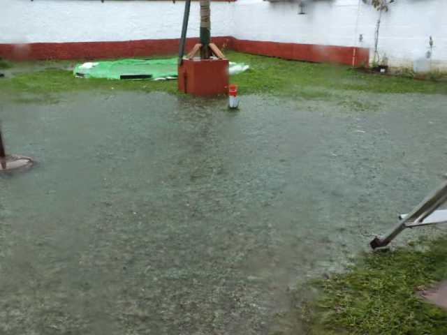 Garten unter Wasser