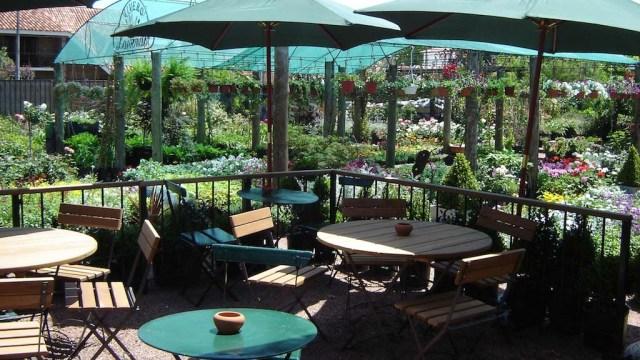 Gärtnerei und Restaurant in einem - das Lavender