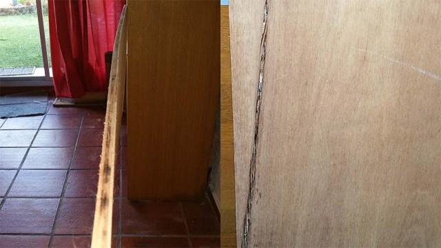 Sperrholz in Uruguay