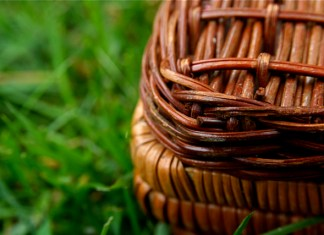 Steven Depolo - picnic July