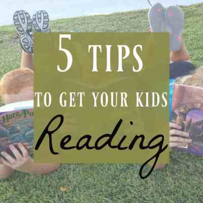 Book Series ~ How to Avoid the Summer Slide