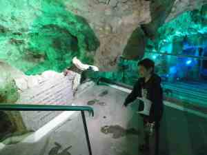 St Michaels Caves