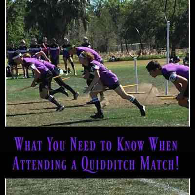10 Things You Need to Know About a Quidditch Match