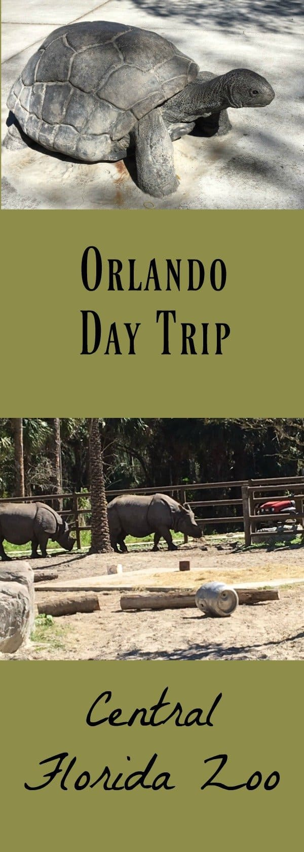 Orlando Day Trip