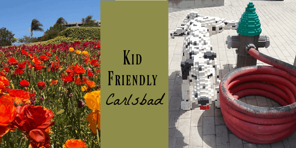 kid friendly Carlsbad