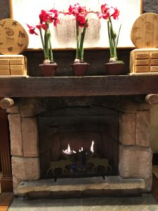 another fireplace we found at the Wilderness Lodge