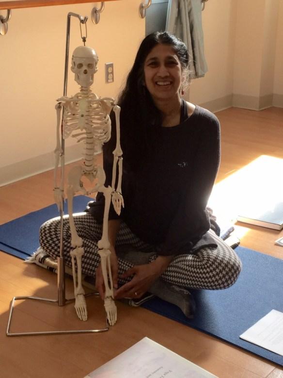 yoga, transformation, boomer wellness, anatomy + physiology