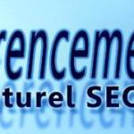 Le référencement  naturel  SEO  et le marketing des moteurs de recherche SEM