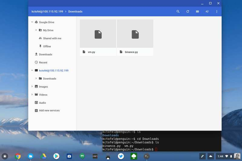 Files moved from Chrome OS to Linux