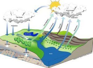 History And Origin of Hydrology  Development of Hydrology
