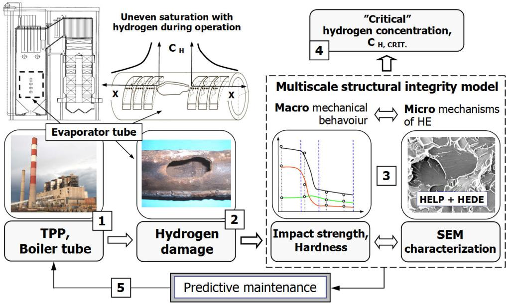 Concept of a structural integrity model for prediction of hydrogen embrittlement and damage in steels