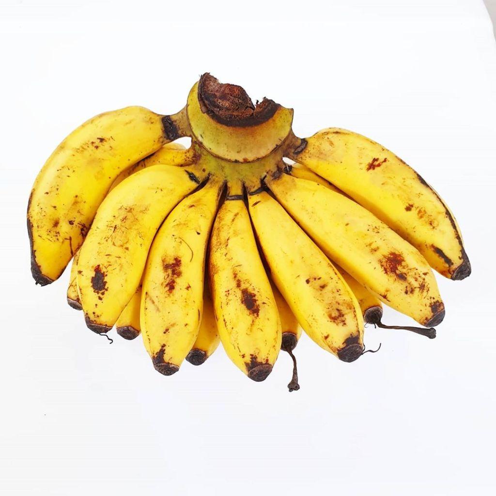latondan bananas