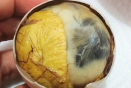 Balut: Duck Egg Yolk and Chick