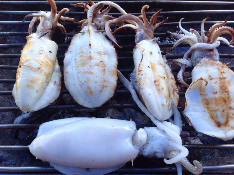 Squids Being Grilled