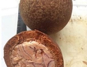 Tabon-Tabon (Philippine Fruit)