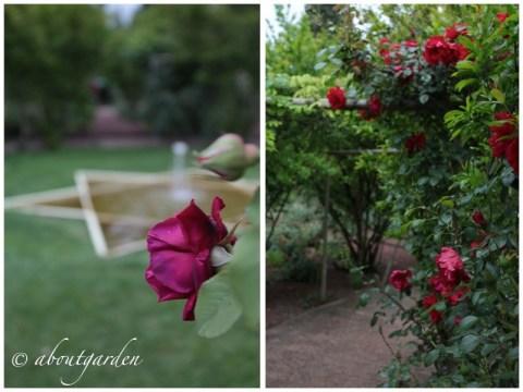 giardino rosso