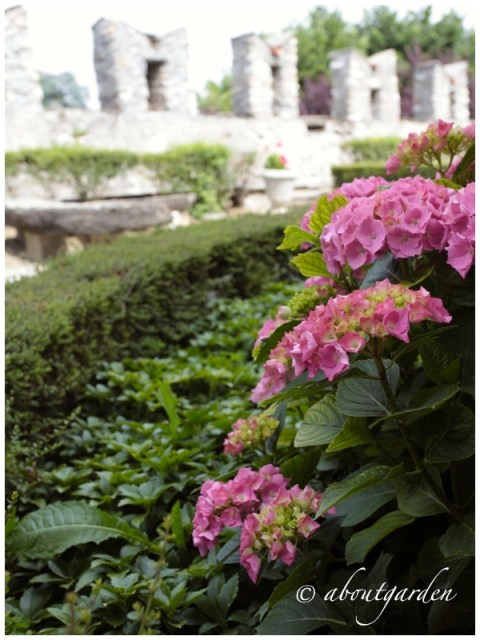 Giardino Blanchi di Roascio