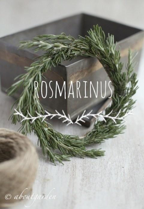 rosmarinus wreath